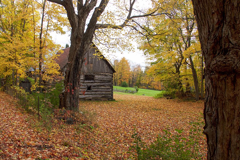 Log Cabin - Quarry Road